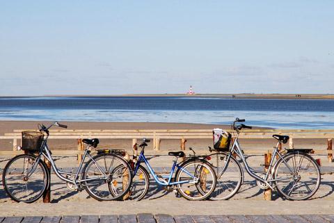 Borkum Karte Fahrradwege.Radfahren An Der Nordsee Ferienhaus Nordsee
