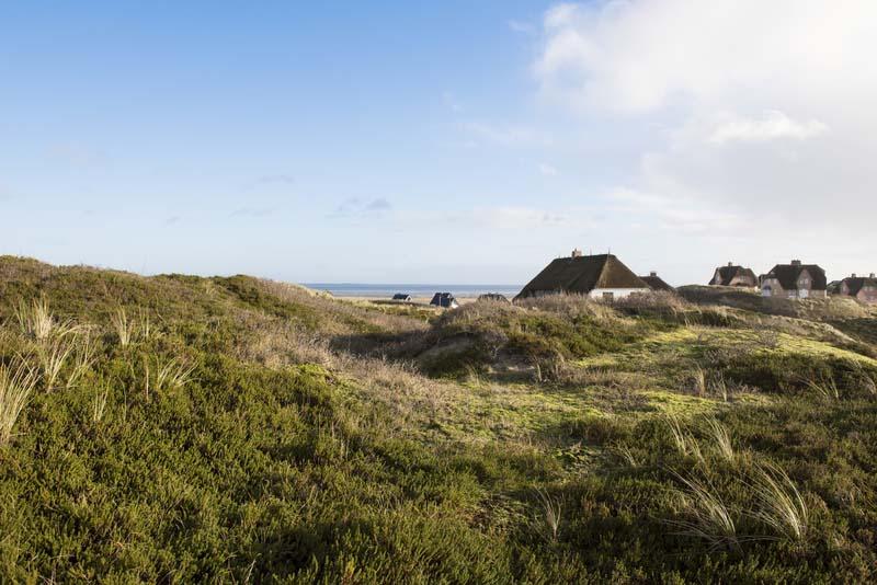 Strandhaus An Der Nordsee Ferienhaus Nordsee